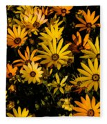 Beautiful African Daisies Fleece Blanket