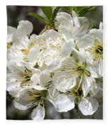 Beautiful Apple Blossoms Fleece Blanket