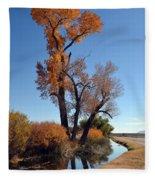 Beautiful Bishop Canal Fleece Blanket