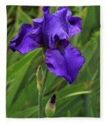 Beautiful Purple Iris Flower Art Fleece Blanket