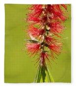 Beautiful Bottle Brush Flower Fleece Blanket