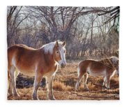Beautiful Horses Fleece Blanket