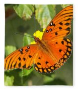 Beautiful Orange Butterfly - Gulf Fritillary Fleece Blanket