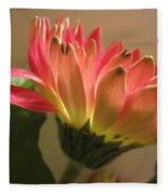 Beautiful Pink Gerbera Daisy 2 Fleece Blanket