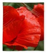 Beautiful Poppies 10 Fleece Blanket