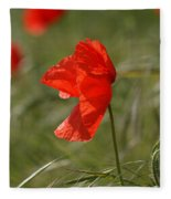 Beautiful Poppies 5 Fleece Blanket