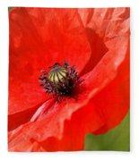 Beautiful Poppies 6 Fleece Blanket
