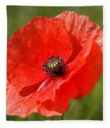 Beautiful Poppies 7 Fleece Blanket