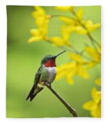 Beautiful Summer Hummer Fleece Blanket