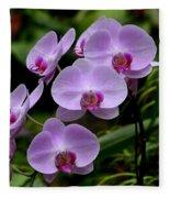 Beautiful Violet Purple Orchid Flowers Fleece Blanket