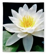 Beautiful Water Lily Capture Fleece Blanket