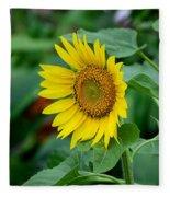 Beautiful Yellow Sunflower In Full Bloom Fleece Blanket