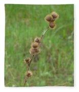 Prickly Histle Beauty Among The Grasses Fleece Blanket