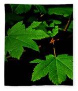 Beauty In Nature Fleece Blanket