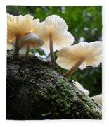 Beauty Of Mushrooms Argentina Fleece Blanket
