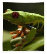 Beauty Of Tree Frogs Costa Rica 3 Fleece Blanket