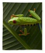 Beauty Of Tree Frogs Costa Rica 8 Fleece Blanket