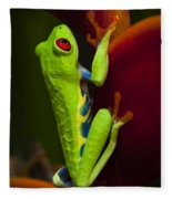 Beauty Of Tree Frogs Costa Rica 9 Fleece Blanket