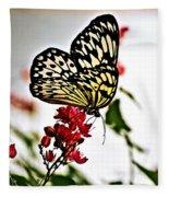 Beauty Wing Fleece Blanket