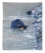 Beaver Chews On Stick Fleece Blanket