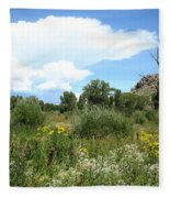 Beaver Creek Valley In Colorado Fleece Blanket