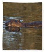 Beaver Swimming Fleece Blanket