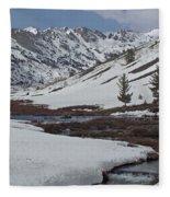 Beaver Valley Fleece Blanket