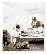 Bed Time For Kitty Cats Histrica Photo Circa 1900 Fleece Blanket