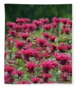 Bee Balm Bounty Fleece Blanket