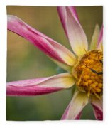 Bee Enjoying A Willie Willie Dahlia Fleece Blanket