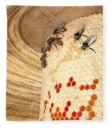 Bee Hive Fleece Blanket