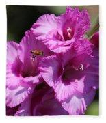 Bee In Pink Gladiolus Fleece Blanket