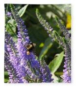 Bee Lavendar Fleece Blanket