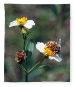 Bee- Nectar Fleece Blanket