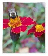 Bee On A Marigold 2 Fleece Blanket