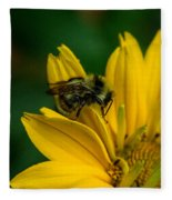 Bee On A Quest Fleece Blanket