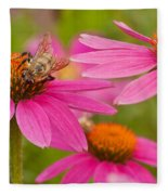 Bee On Coneflower Fleece Blanket