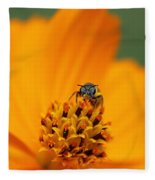 Bee On Cosmo Fleece Blanket