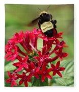 Bee On Flower Cluster Fleece Blanket