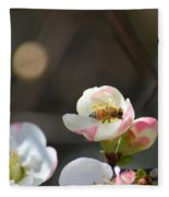 Bee On Japanese Quince Fleece Blanket