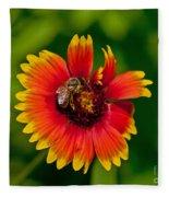 Bee On Orange Flower Fleece Blanket