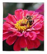 Bee On Pink Flower Fleece Blanket