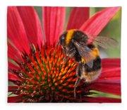 Bee On Red Coneflower 2 Fleece Blanket