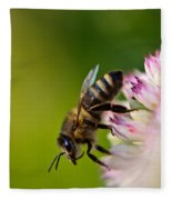 Bee Sitting On A Flower Fleece Blanket