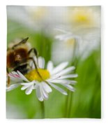Bee The Daisy Fleece Blanket