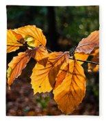 Beech Leaves In Winter Fleece Blanket