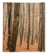 Beech Wood In Autumn Fleece Blanket