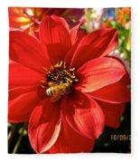Bee's Dahlia Delight Fleece Blanket