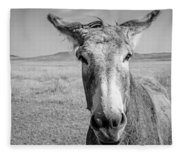 Begging Burro Fleece Blanket