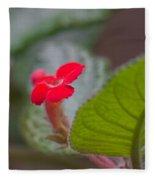 Episcia Flower Fleece Blanket
